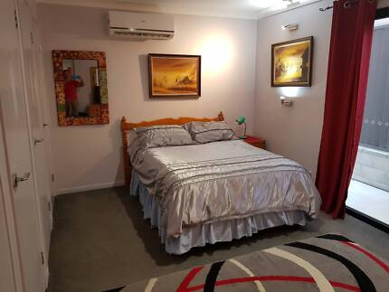 Professional, Clean Person Needed for Large Room in Granny Flat