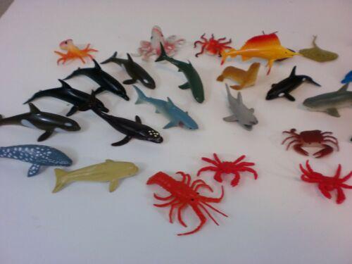 37 Sea Animal Aquatic Life Creatures Ocean Shark Whale Fish Mammal Crustacean