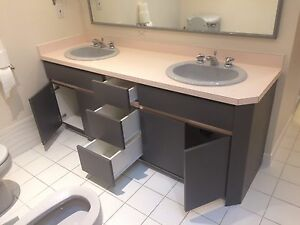 Bathroom sinks and vanity