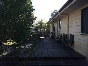 Share a house. Blacktown Blacktown Area Preview