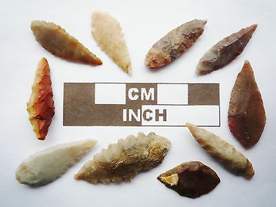 Neolithic Arrowheads, 10 x Leaf Style Artifacts - 4000BC - (R018)