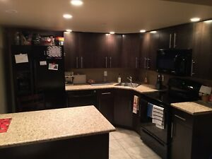 Sublet at 160 Smith Street - $1375mth - damage deposit free !!
