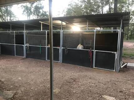 Wanted: horse stables