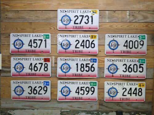 North Dakota Spirit Lake Tribe Lot of 10 Exp License Plates ~ 2731... ~ Embossed