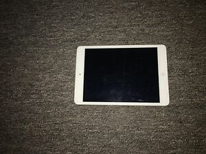 iPad mini for sale Camp Creek Inverell Area Preview