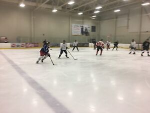 Hockey Players Wanted. Daily Games