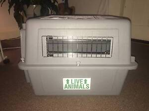 PET CARRY/TRAVEL CRATE Randwick Eastern Suburbs Preview