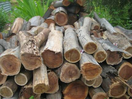 Firewood, cut bagged mallee,campfires,pizza oven,combustion fires Gawler Gawler Area Preview