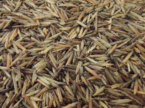 Minnesota Wild Rice Hand-Harvested 100% Natural