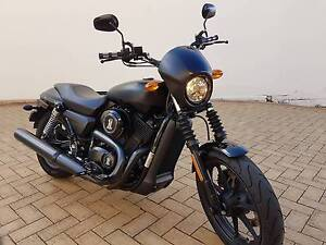 Harley Davidson -  Street 500 for Sale Leichhardt Leichhardt Area Preview