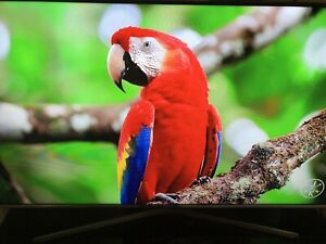 SAMSUNG 50 INCH  SMART TV + HOME ENTERTAINMENT PACKAGE