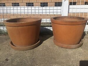 2 large terracotta pots with saucers Golden Beach Caloundra Area Preview