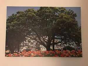Wall Print 75x50cm Albion Brisbane North East Preview