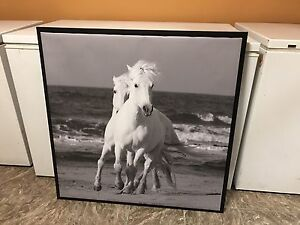Large canvas horse pic