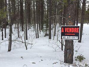 Terrain à vendre - Vauvert sur le Lac St-Jean
