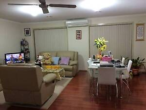 Room available in Gungahlin-$160 including expenses Gungahlin Gungahlin Area Preview