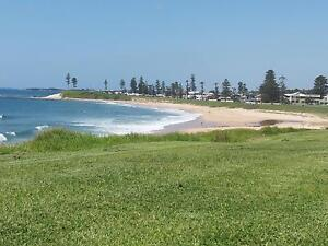 D.O.H - Bulli Beach for Western sub sydney Bulli Wollongong Area Preview