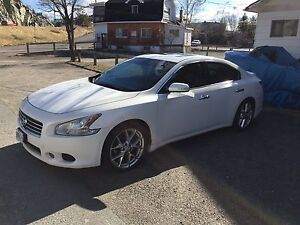 2010 Nissan Maxima SV - For Sale