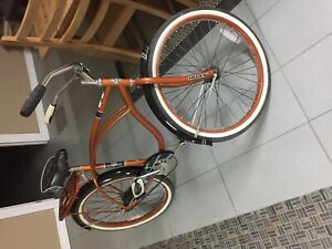 Single Speed Cruiser Bicycle (Barely Used)