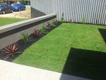 Instant Lawns Morley Bayswater Area Preview