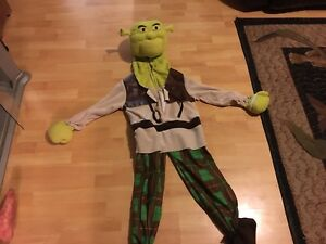 Youth shrek costume