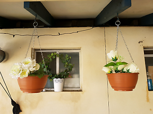 2 Flower hanging baskets Perth Perth City Area Preview