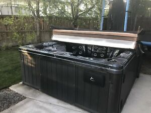 Caspian Hot Tub - Bought new in 2010
