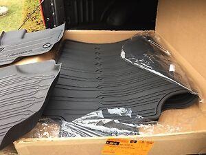 Custom Ford F150 floor mats