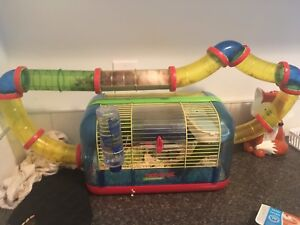 Hamster and gerbil for sale