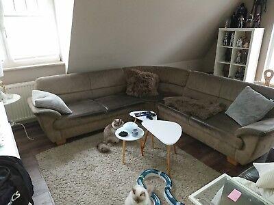 Braune Sofa