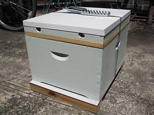 Brand new bee hive with bees - Beekeeping Stanmore Marrickville Area Preview