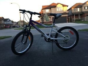 "20"" 5 speed Supercylce bike with front suspension"