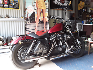 2009 883 harley iorn sportster Ravenswood Charters Towers Area Preview