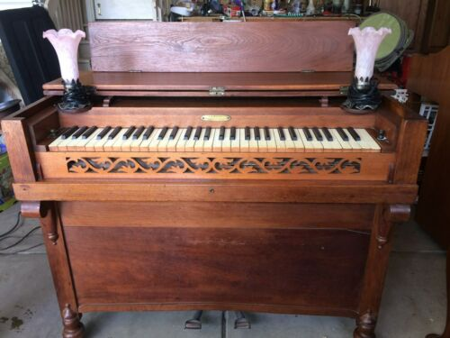 Amazing Antique Melodian/Melodeon Rosewood Pump Organ In working order