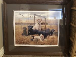 Ducks Unlimited wall pictures