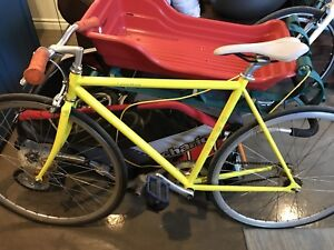 Vélo single speed Fuji feather