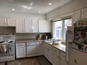Kitchen cabinets and countertop.