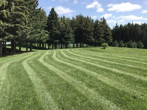 Commercial/residential Lawn Care