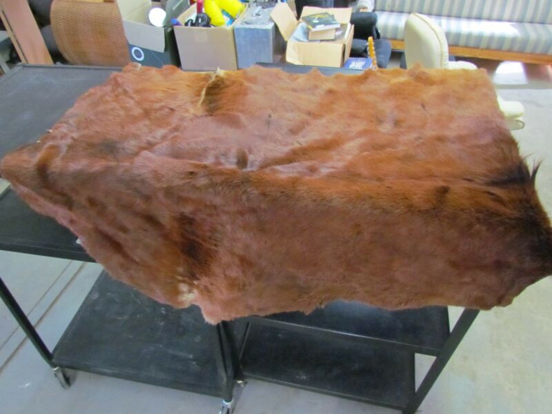 "WHOLE HORSE HIDE - DARK COLOR COMMERCIALLY TANNED HIDE APPROX 42"" BY 54"""