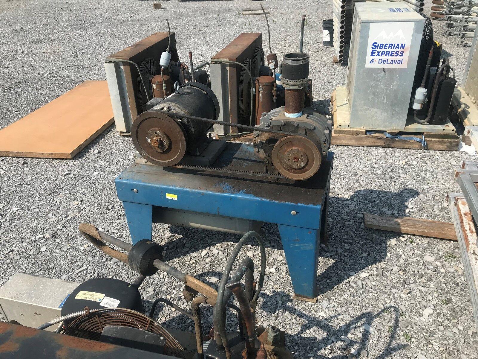 Delaval vacuum pump