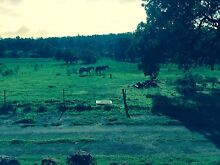 Share Horse Property Mt Helena Mount Helena Mundaring Area Preview