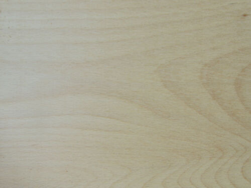 """European Beech Wood Sample (1/2"""" x 3"""" x 6"""") for Crafts, Intarsia, Knives"""