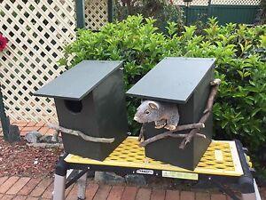 Possum boxes Amaroo Gungahlin Area Preview