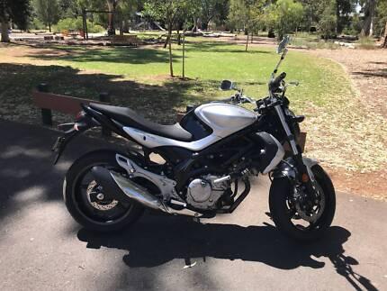 LAMS Suzuki SV6500ULI1 Gladius LOW KMS
