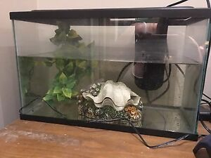 10 gallon full set up  Cambridge Kitchener Area image 1