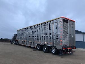 Merritt special edition hog And  Cattle Trailer