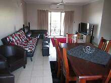Spacious bedroom in a large flat next to the CBD Larrakeyah Darwin City Preview
