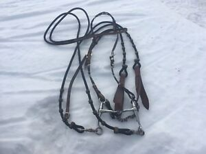 Bridle and reins