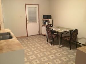 3 bedroom apartment for rent (central)