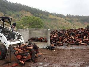 Firewood A1 quality Canungra Ipswich South Preview